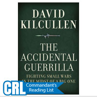 Accidental Guerilla, The: Fighting Small Wars in the Midst of a Big One