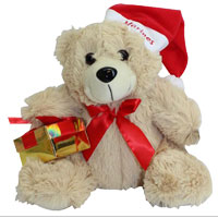 Plush: Marine Corps Holiday Bear