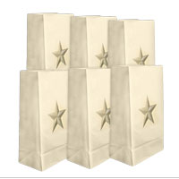 Gold Star Luminary Bags (Box of 100)