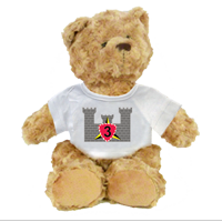 Plush Teddy Bear: 3rd CEB (customizable)