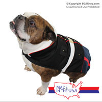 Dog Clothing: Dress Blue Uniform